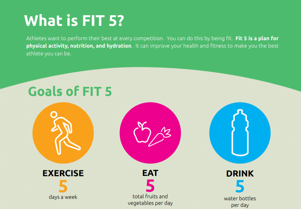 Fit 5 Overview